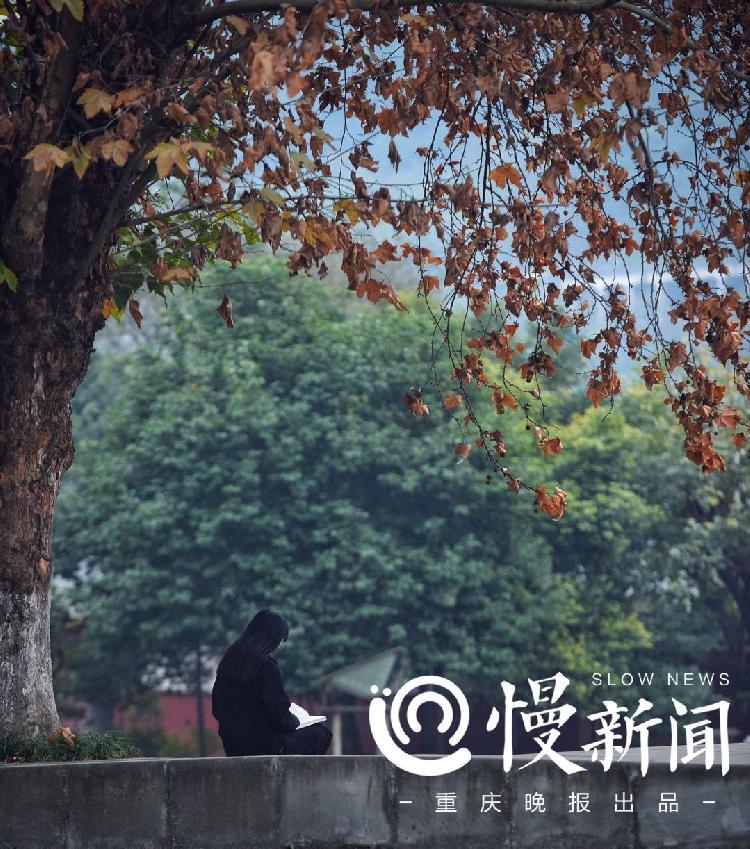 女孩去世后10岁的她撑起一个家重庆父亲倪冬二高中长春模2017图片