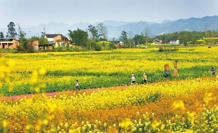 农村旅游规划设计_农村旅游规化设计_农村绿色基础设施对农村规划建设模式的影响