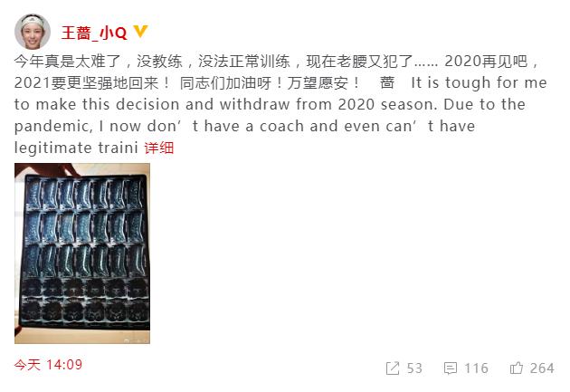 王蔷宣布2020赛季提前报销,今年法网美网均缺席