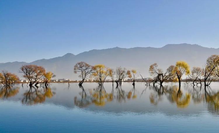 黄龙潭虽然只是一个公园,但它却异常的美丽,堪称摄影的天堂,碧水杳杳