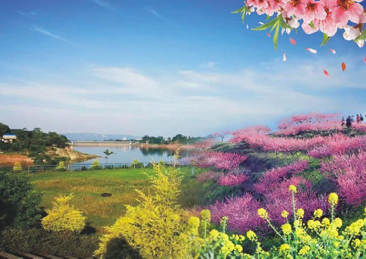 太阳自然风景 桃花