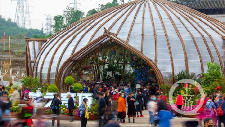 """""""花之穹顶""""展区汇集百余种国际珍稀花卉,成为花博现场的名副其实的""""人气王""""_副本.png"""