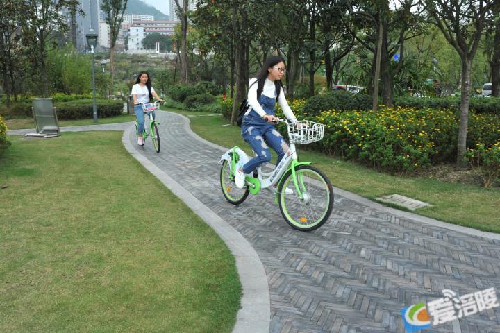 垂直立体绿化让现代城市布满绿色空间