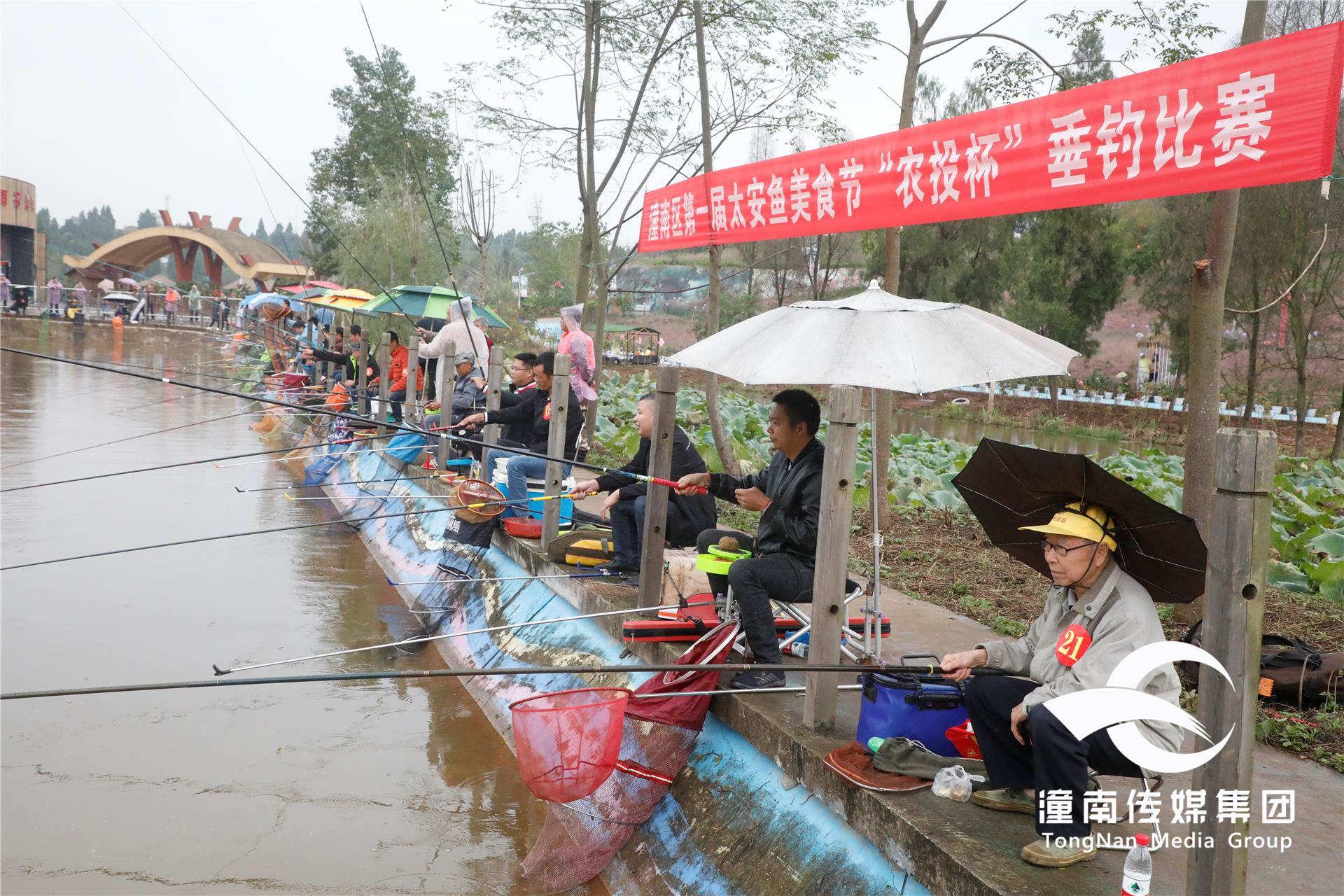 """潼南区第一届太安鱼美食节""""农投杯""""垂钓比赛举行"""