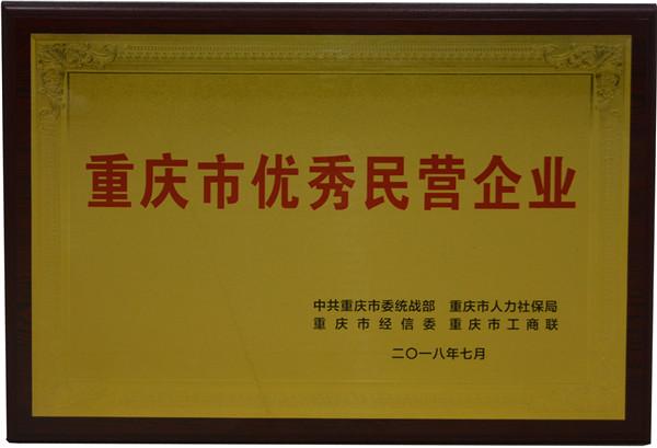 """重庆五洲世纪集团喜获""""重庆市优秀民营企业""""称号.jpg"""