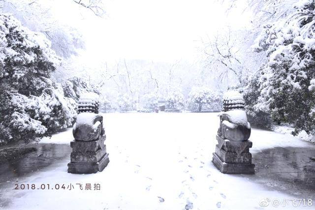1月4日早晨的南京灵谷寺。.jpg