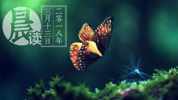 3.13晨读.jpg