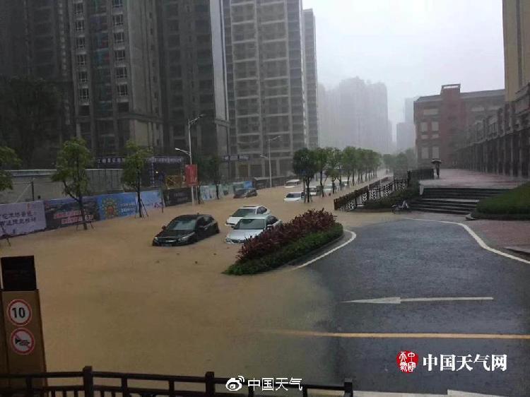 江门新会区出现严重道路积水,汽车被淹。