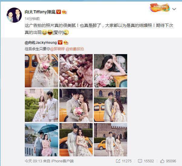 向太不愧是戏精,9天前否认郭碧婷婚礼,如今官宣是为节目打广告