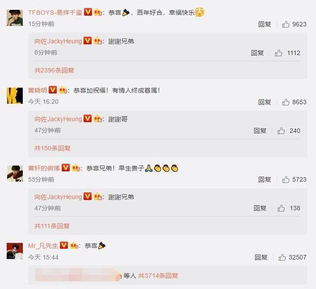 郭碧婷向佐大婚,明星纷纷送祝福,文章、汪峰和陈建州遭网友讽刺