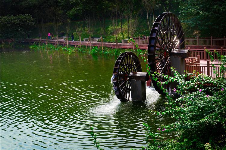九龙坡彩云湖公园.jpg