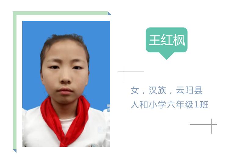 王红枫.jpg