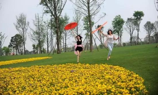 到重庆这些放风筝胜地邂逅春天,让好心情与风筝齐飞