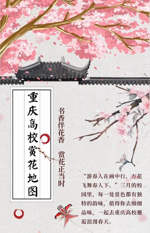 重庆各大高校的浪漫花语,带你邂逅美丽的春天