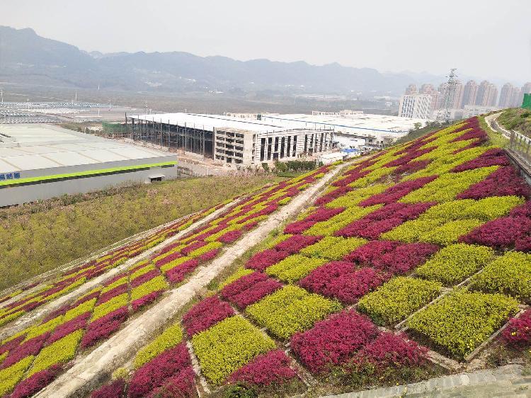 投资近9千万,两江新区龙兴园区启动一批景观工程建设