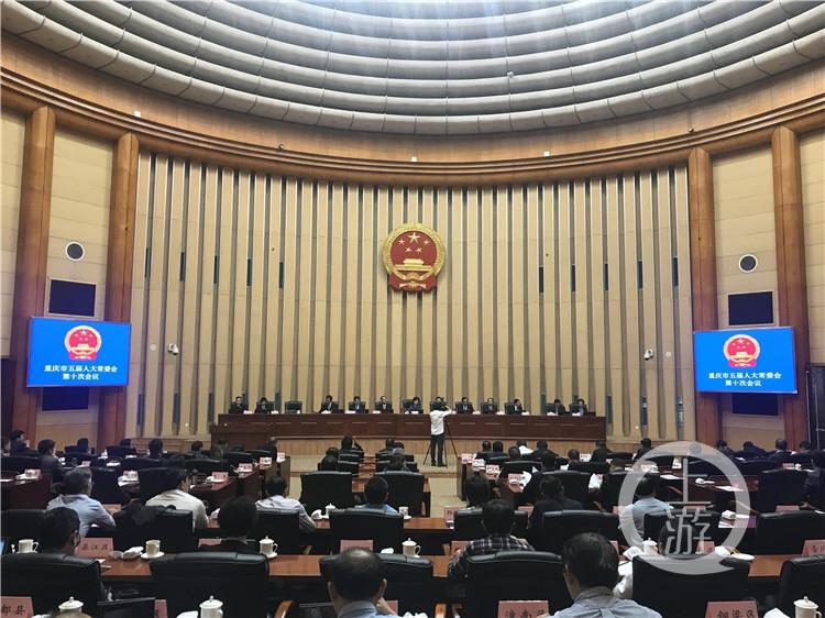 熊雪任重慶市人民政府副市長