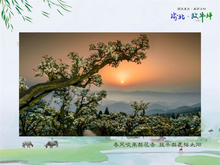 渝北区茨竹放牛坪乡村度假旅游区.jpg