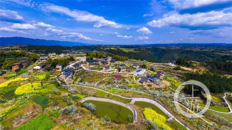 重庆十大最美乡村 | 梁平区百年李子园