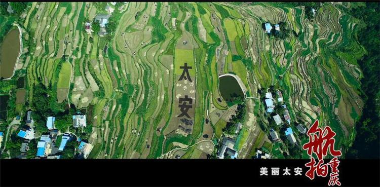 重慶十大最美鄉村 | 萬州區太安鳳凰花果山景區
