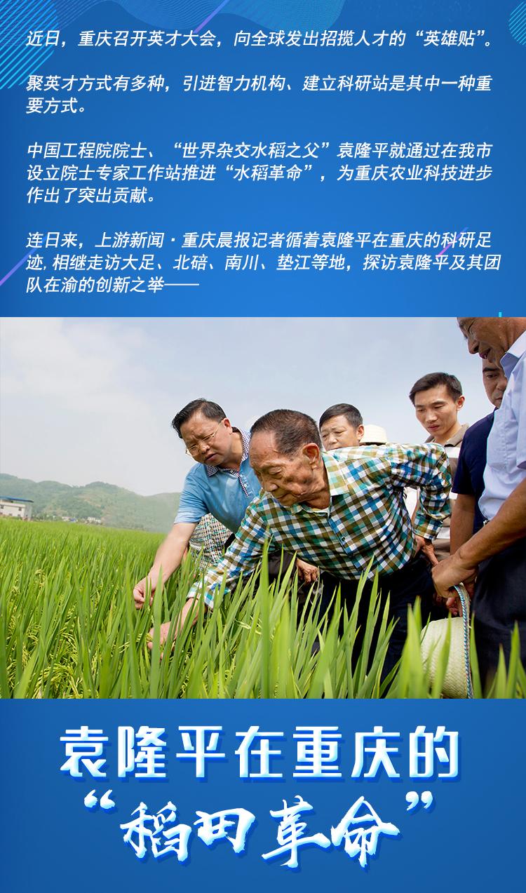 袁隆平(zy).jpg