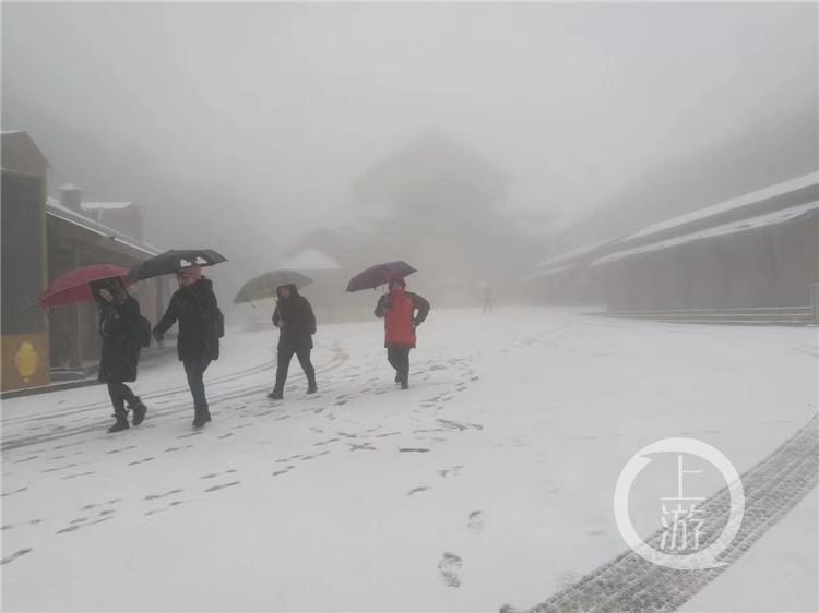 金佛山迎来今冬第一场雪 现场高清雪景图不容错过