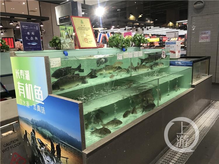 配图,长江禁捕,水库生态鱼养殖成香饽饽(3946185)-20200103173517.jpg