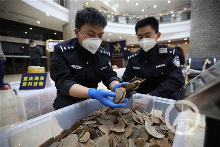 缉私警察在清点涉案走私物品(4454152)-20200410230308_副本.jpg