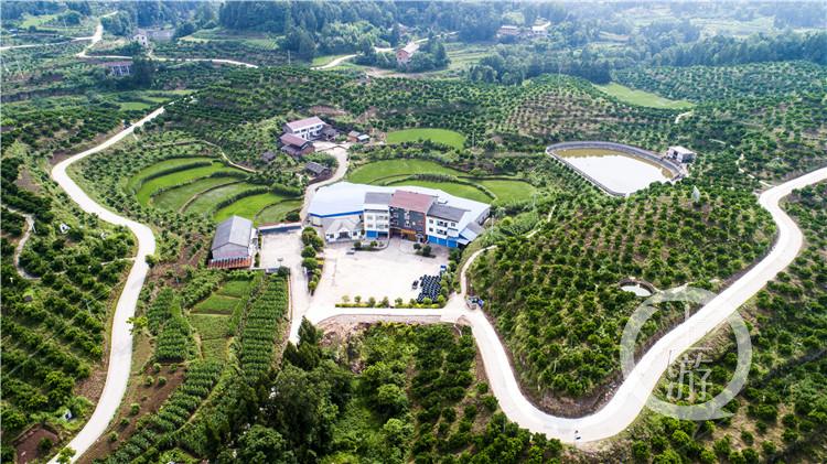 傅坝村部分道路已完成拓宽硬化(4826003)-20200630201002_副本.jpg