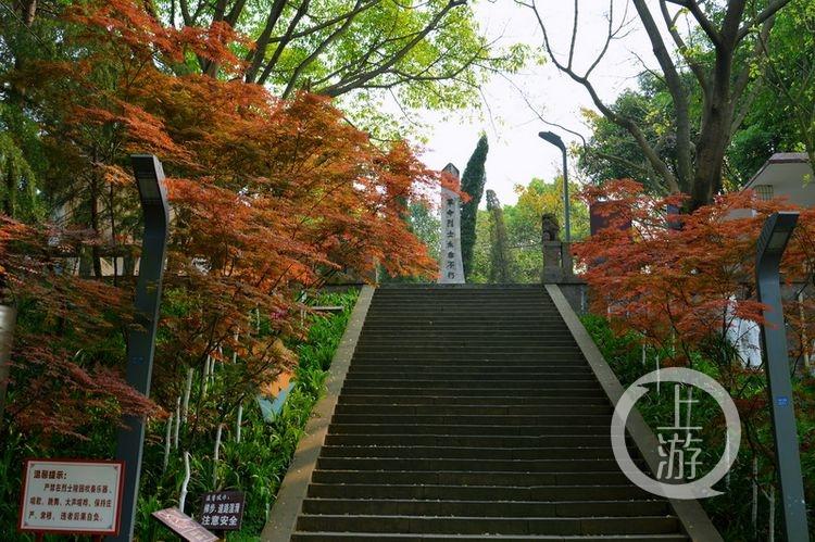 nEO_IMG_荣昌区海棠公园(6146340)-20210404093401.jpg