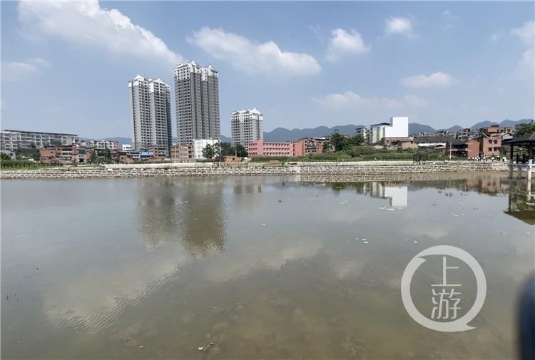 """重庆首个""""水生态修复+面源污染防治""""试点项目加速实施"""