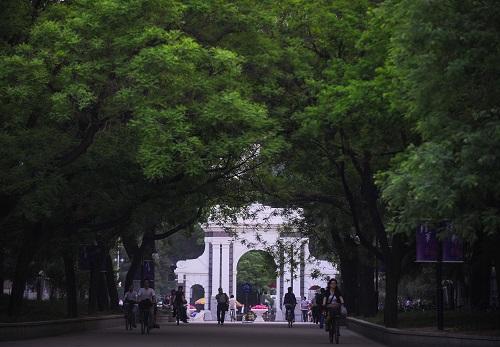 资料图:这是古木参天的清华大学校园一角(2009年5月4日摄)。新华社记者 罗晓光 摄