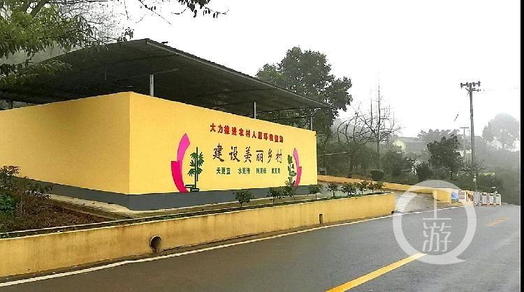 三农专家聚焦重庆乡村振兴 大城市大农村也(3990972)-20200111110428.jpg