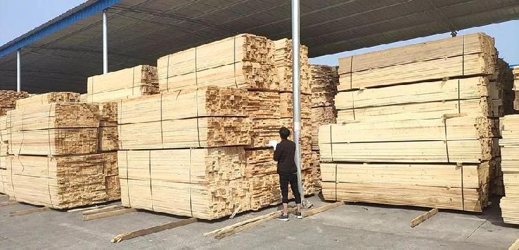 """重庆国际物流枢纽园区将进口木材加入探索陆上贸易规则的""""菜单"""".jpg"""
