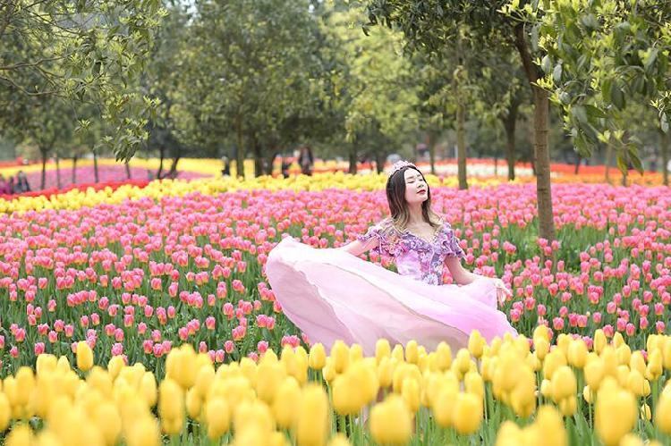 重庆市太寺垭森林公园5.jpg