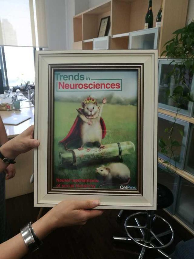 2015年,胡海岚教授应邀《细胞》杂志子刊《神经科学动态》杂志写综述,当时的封面就是胡海岚实验室的主角——老鼠。.jpeg