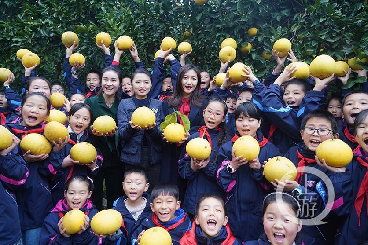 爱心大使和孩子们一起摘柚子-FZ10023704063.jpg